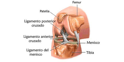 tratamento-do-joelho-1