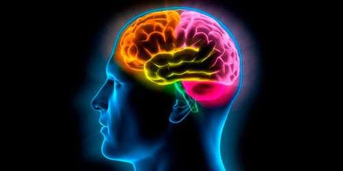 problemas-neurologicos-1