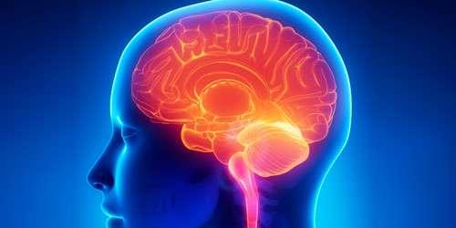 lesoes-neurologicas-1